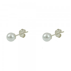 Earrings of Silver 925 White gold plated Code 006127